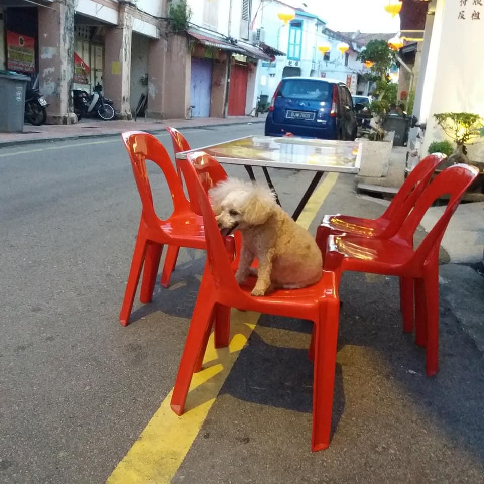 Tofu Cafe, Malaca