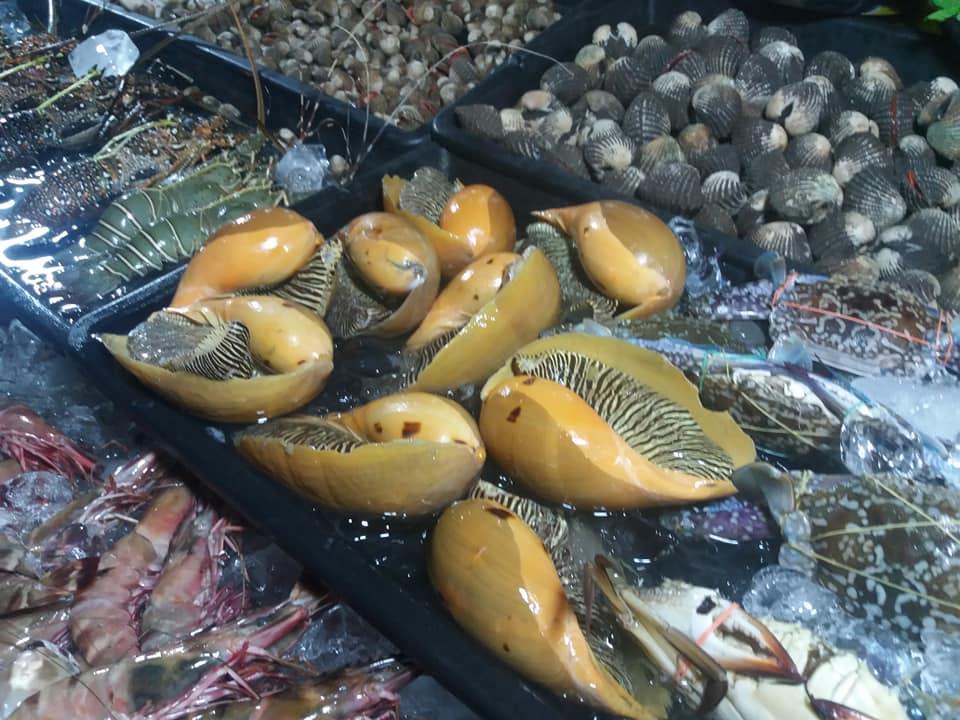 Mercado nocturno de mariscos frente al mar, Kota Kinabula