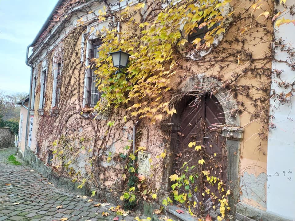 Cobbled streets of Szentendre